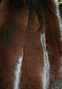 Песец коричневый крашенный